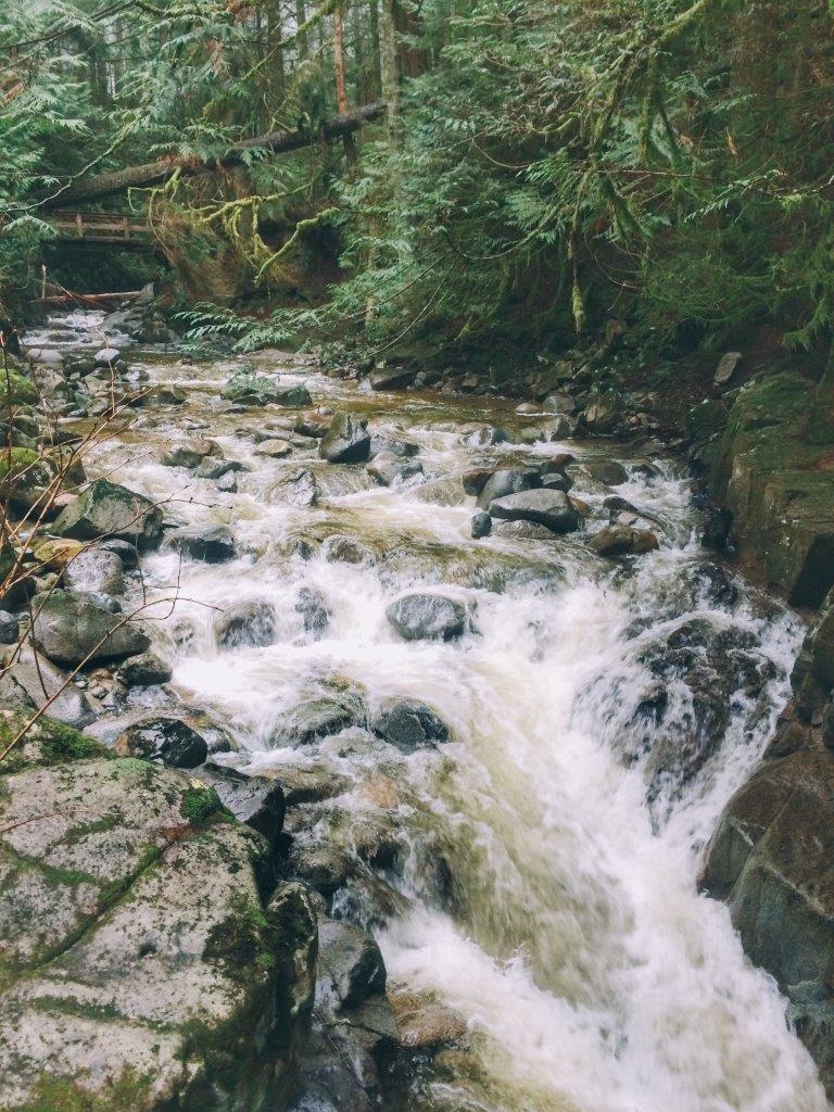 jana meerman cypress falls