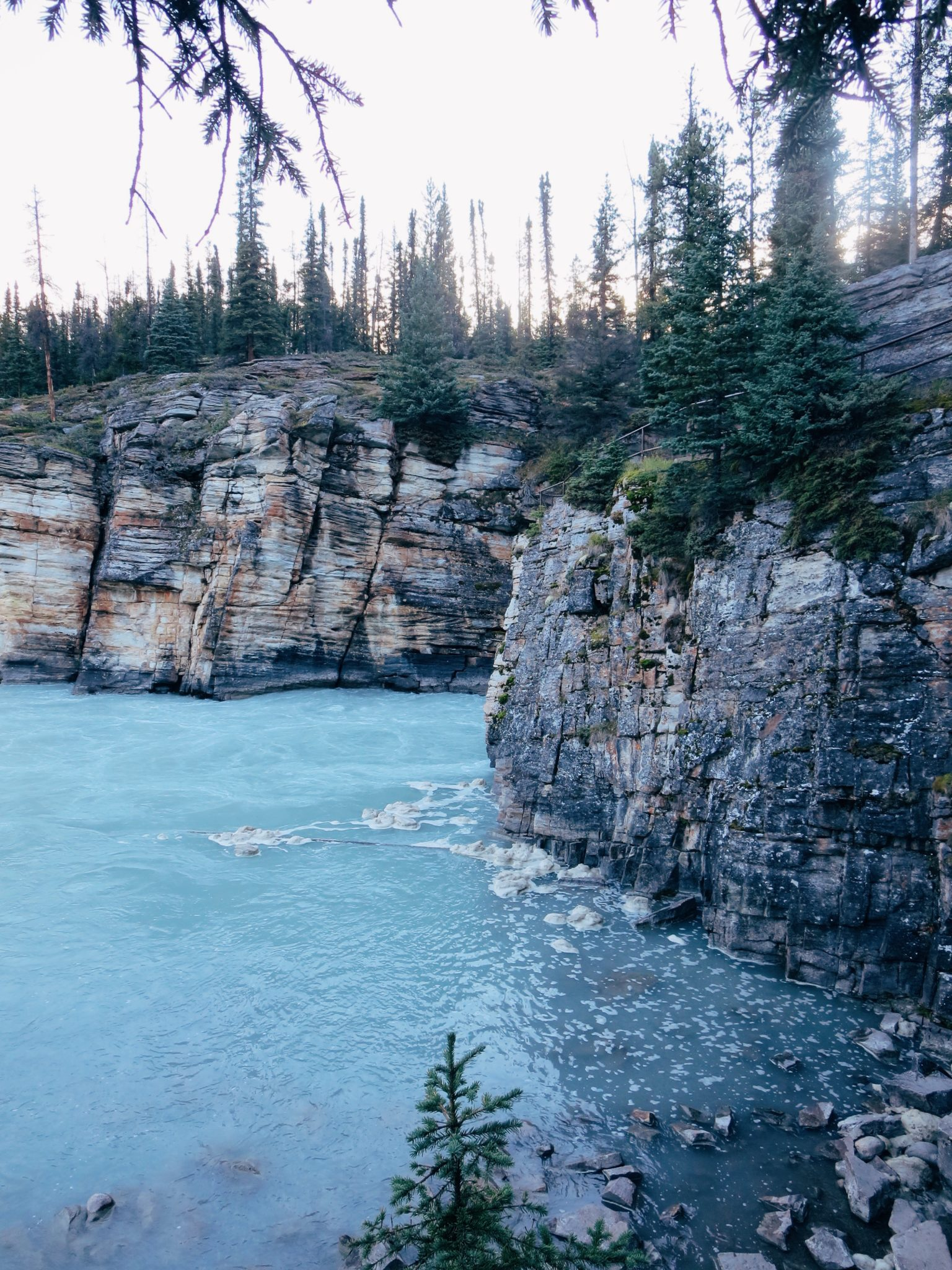 jana meerman athabasca falls