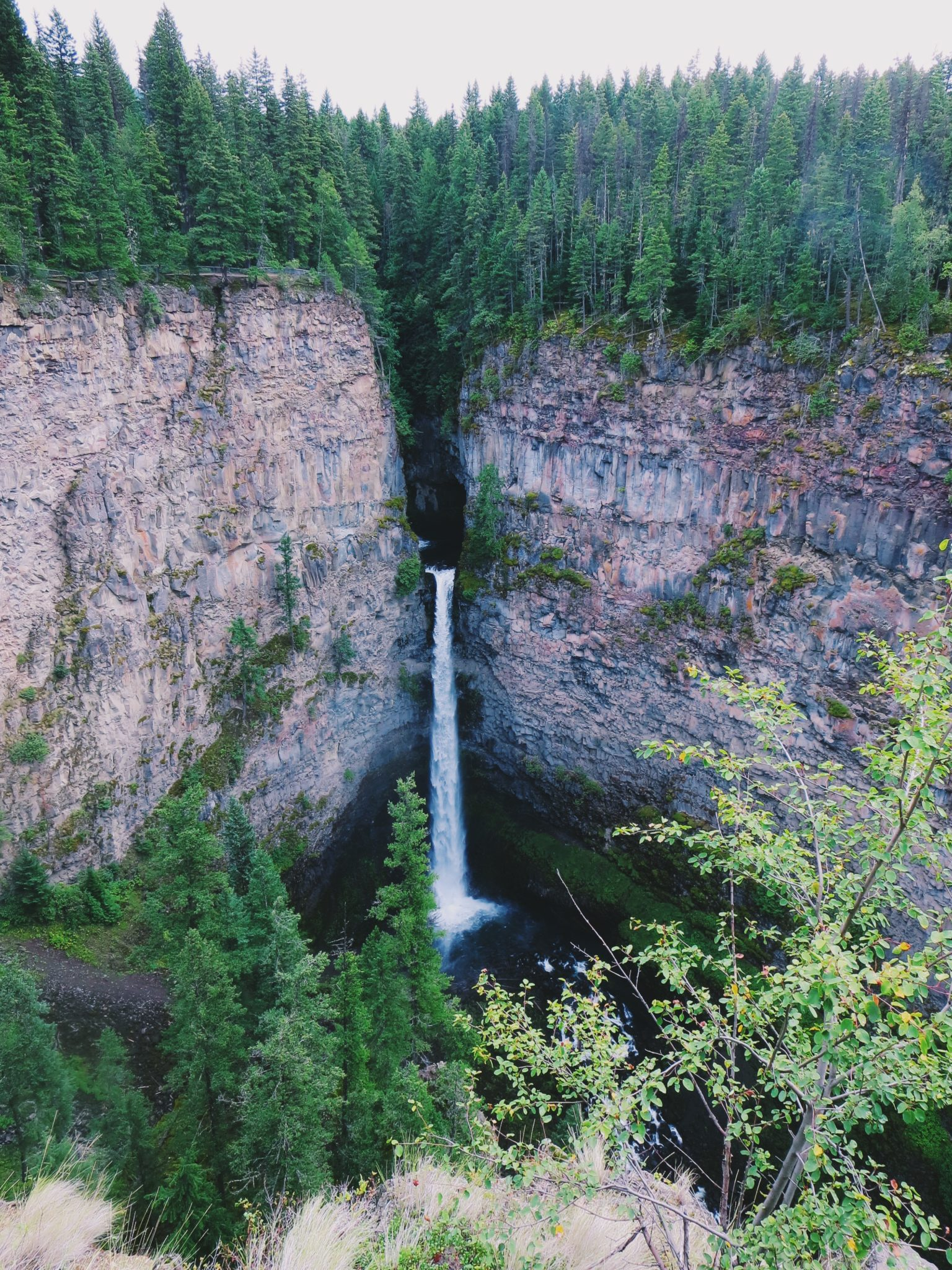 jana meerman wells gray provincial park