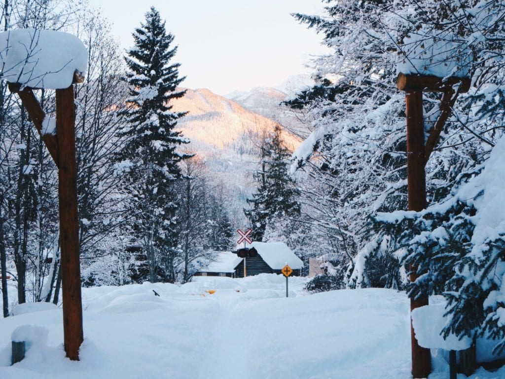 Winter Holiday: Whistler, BC