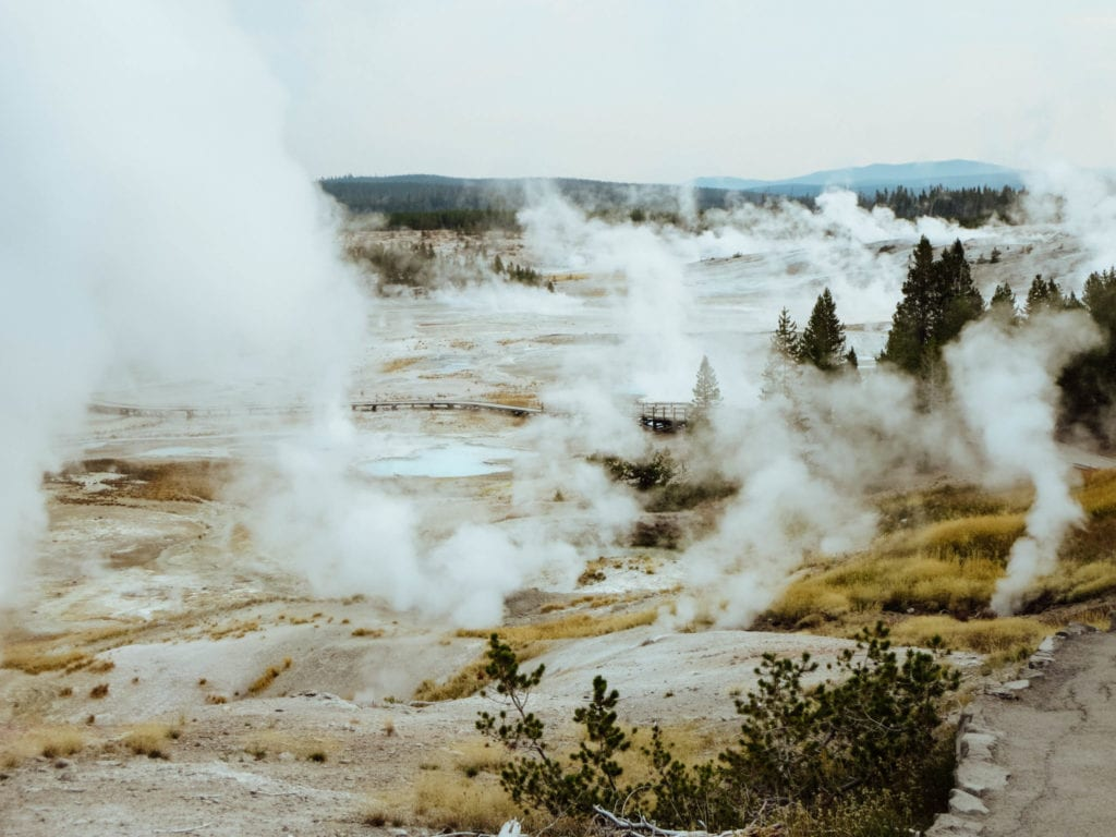 jana meerman yellowstone national park-25