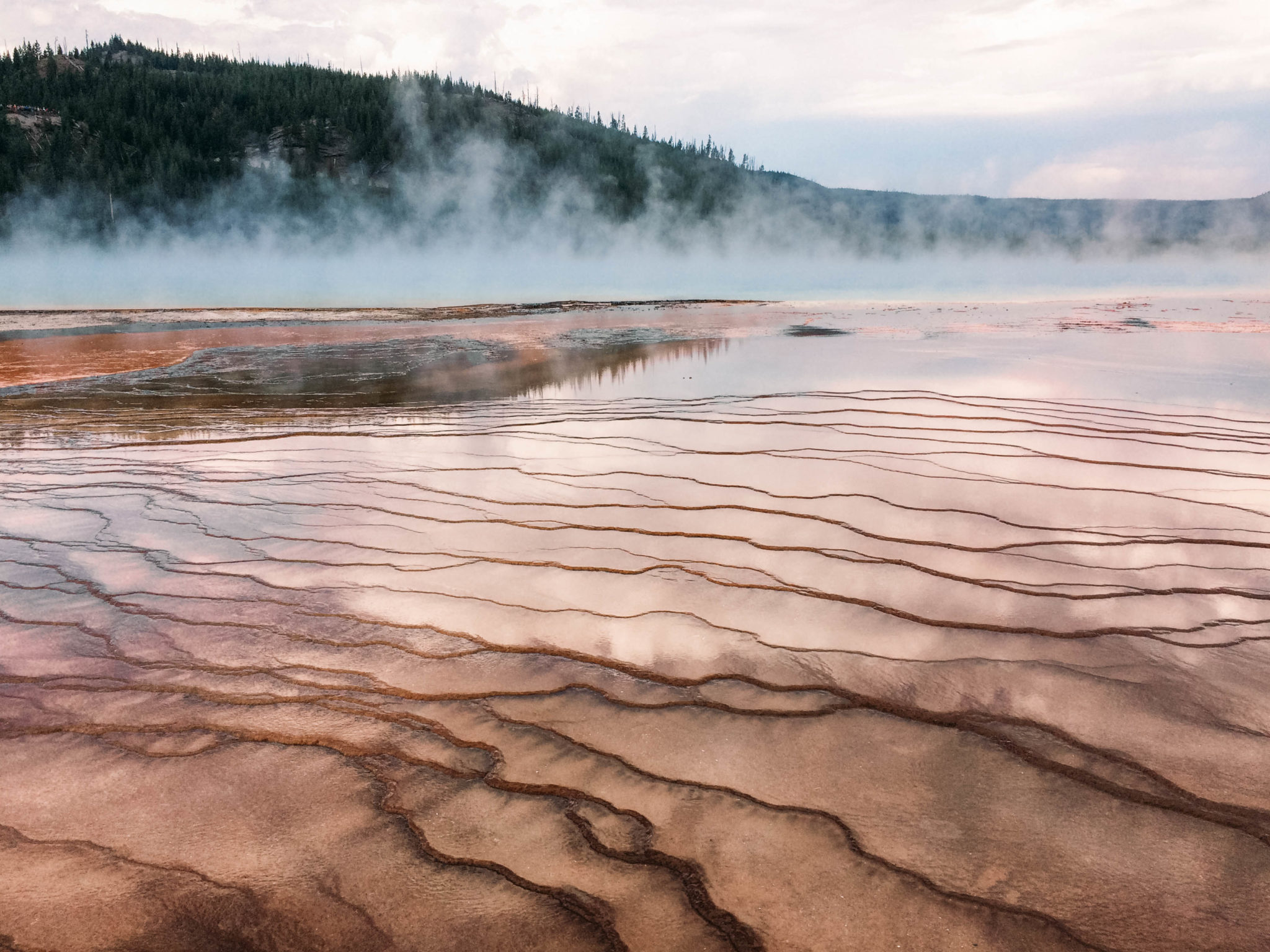 jana meerman yellowstone national park-36