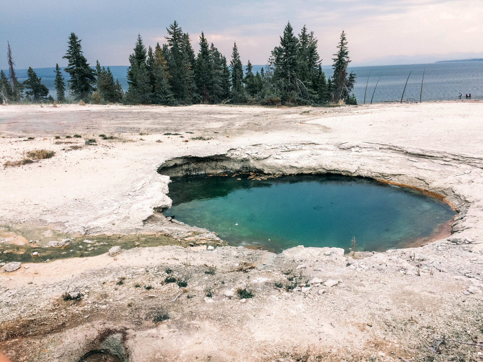 jana meerman yellowstone national park-45