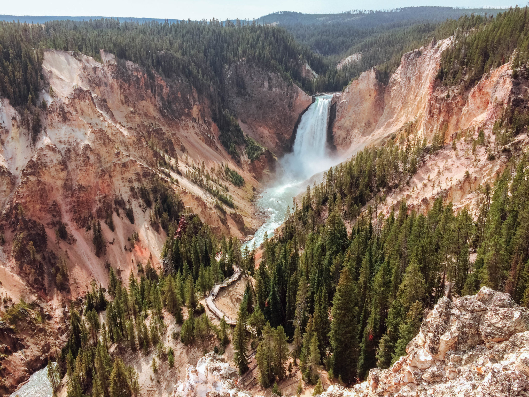 jana meerman yellowstone national park-50