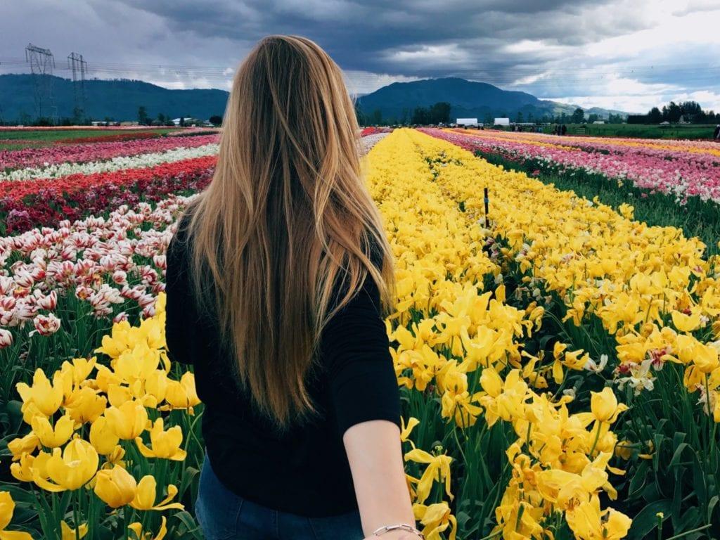 The Abbotsford Tulip Festival