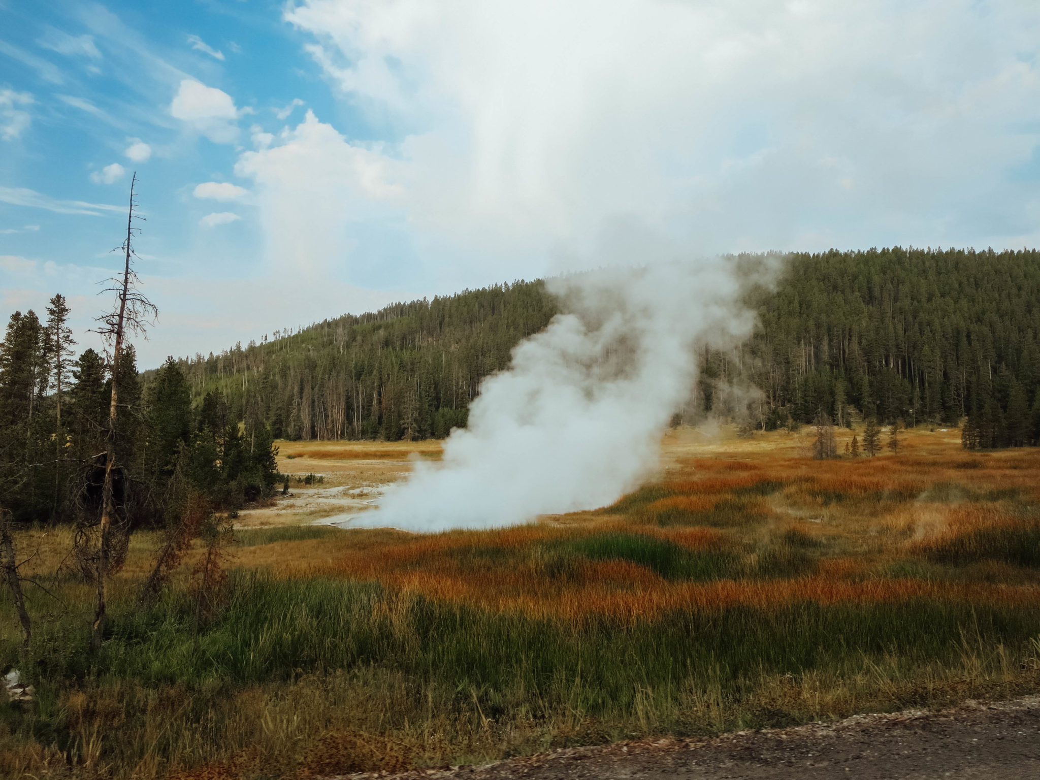jana meerman yellowstone national park-22