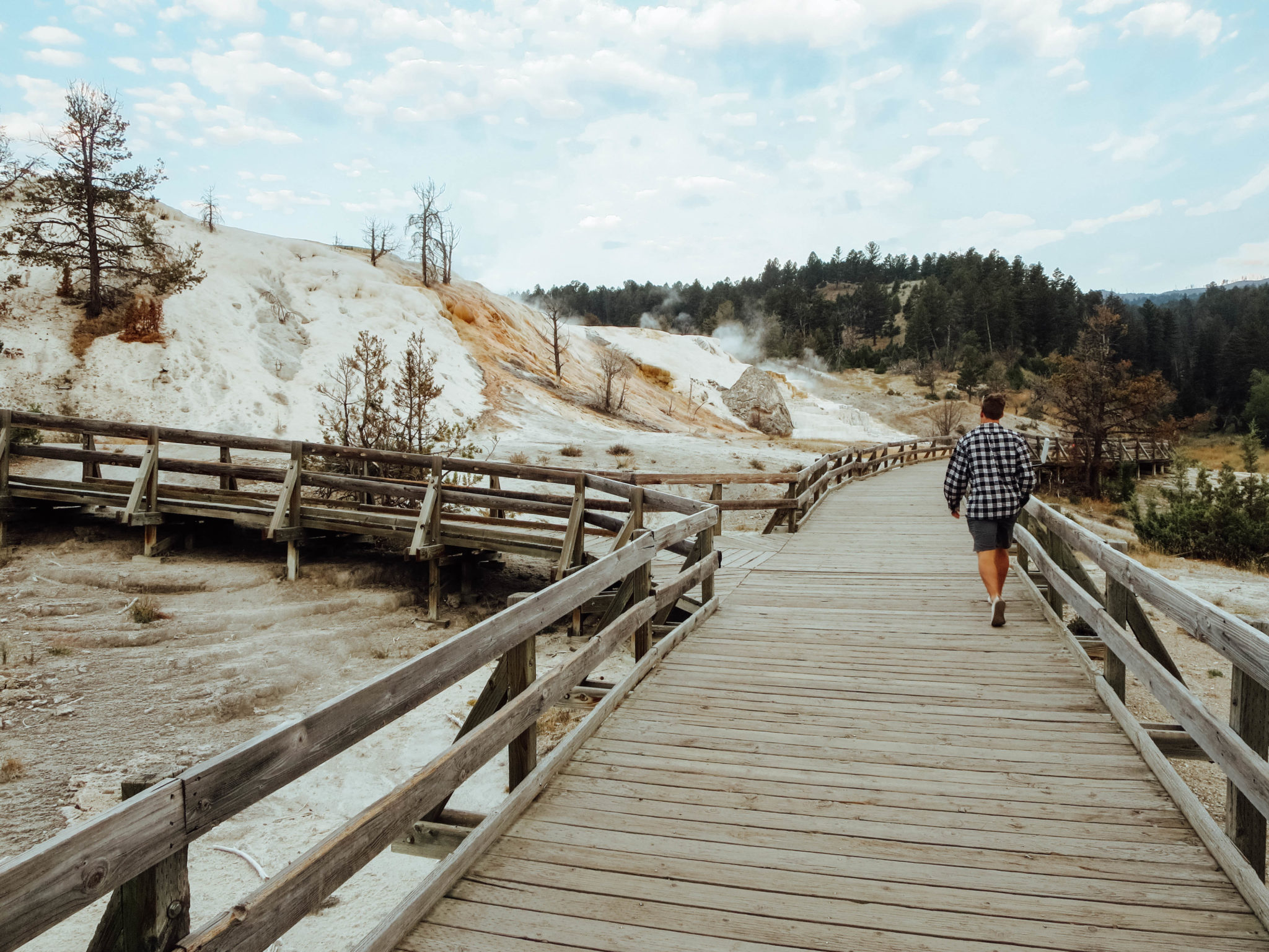 jana meerman yellowstone national park-7