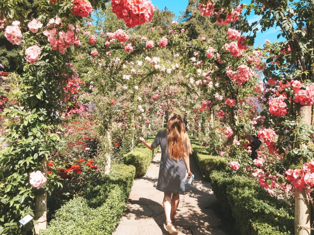 jana meerman butchart gardens lochside regional trail vancouver island-12
