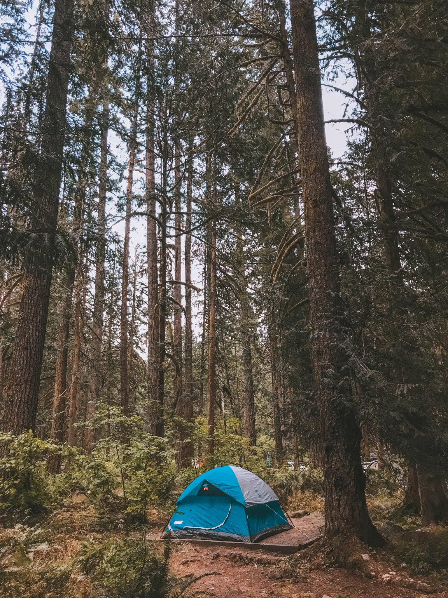 jana meerman mount baker camping-1