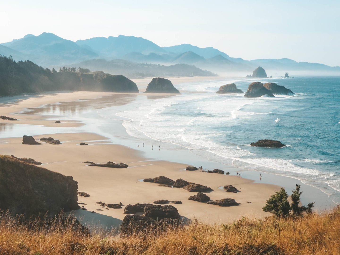Oregon Coast Roadtrip