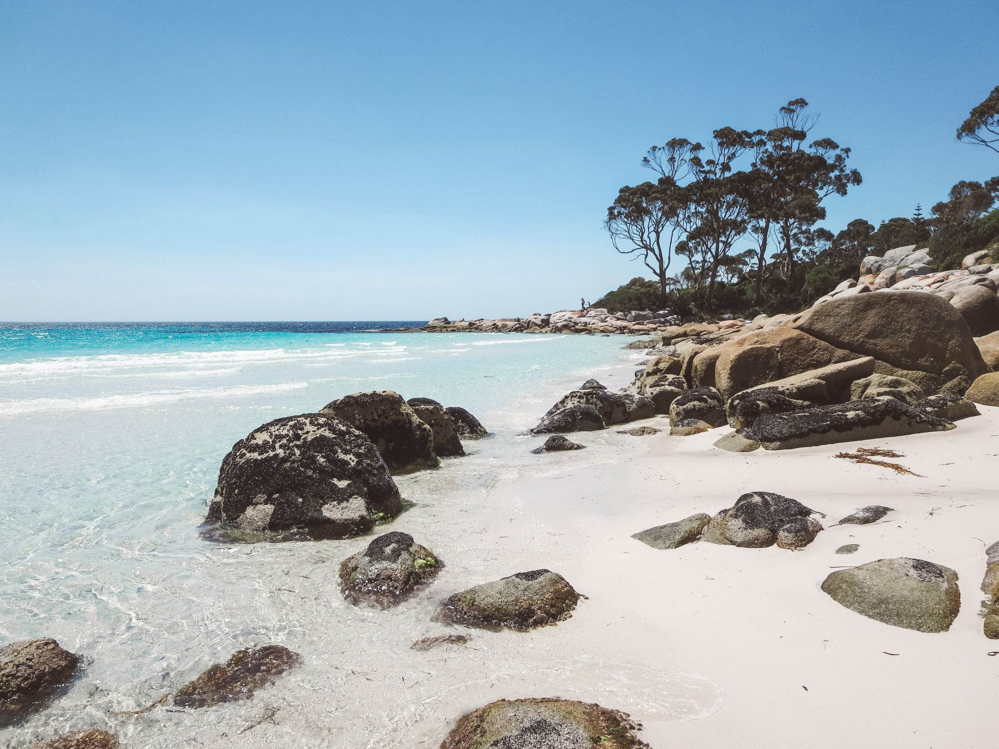 jana meerman bay of fires tasmania (2)