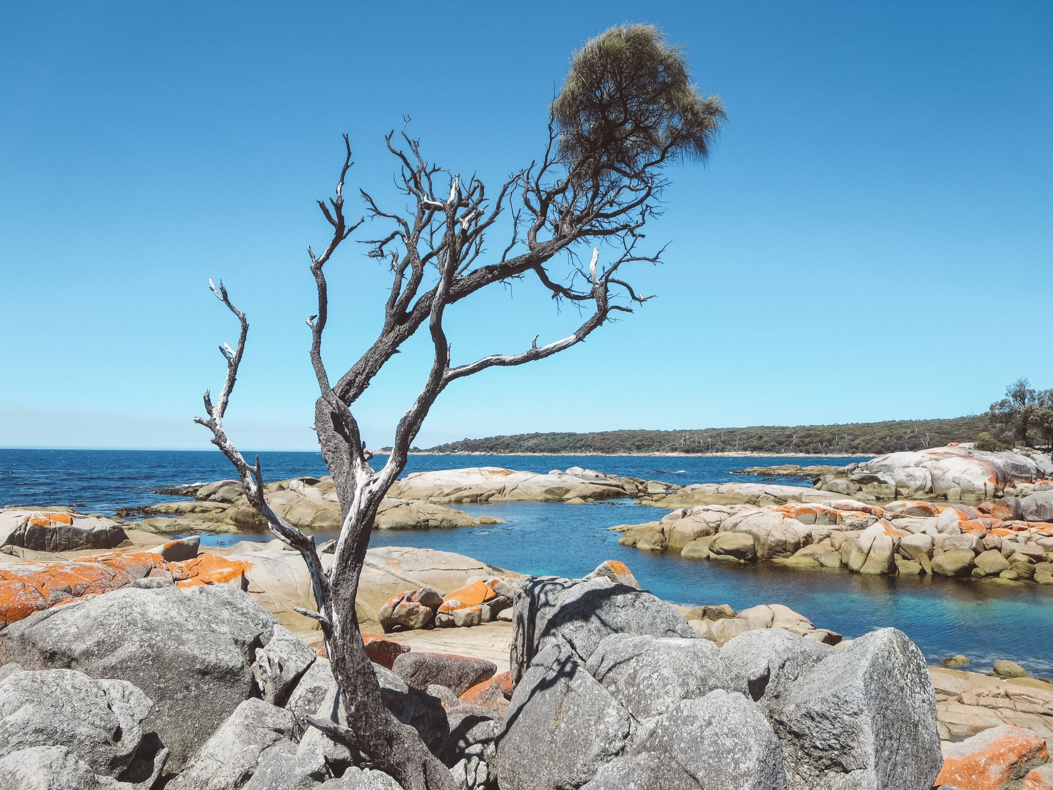 jana meerman bay of fires tasmania (9)
