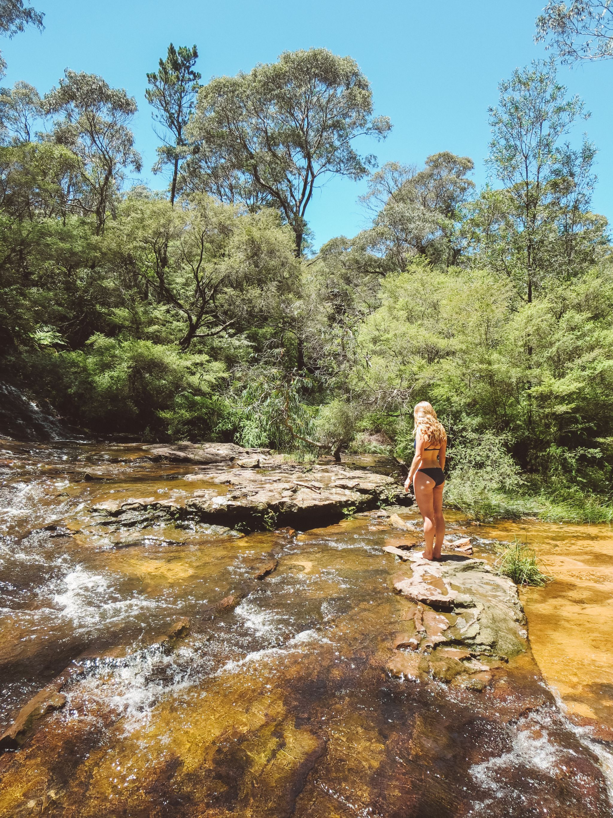 jana meerman blue mountains national park wentworth falls (6)