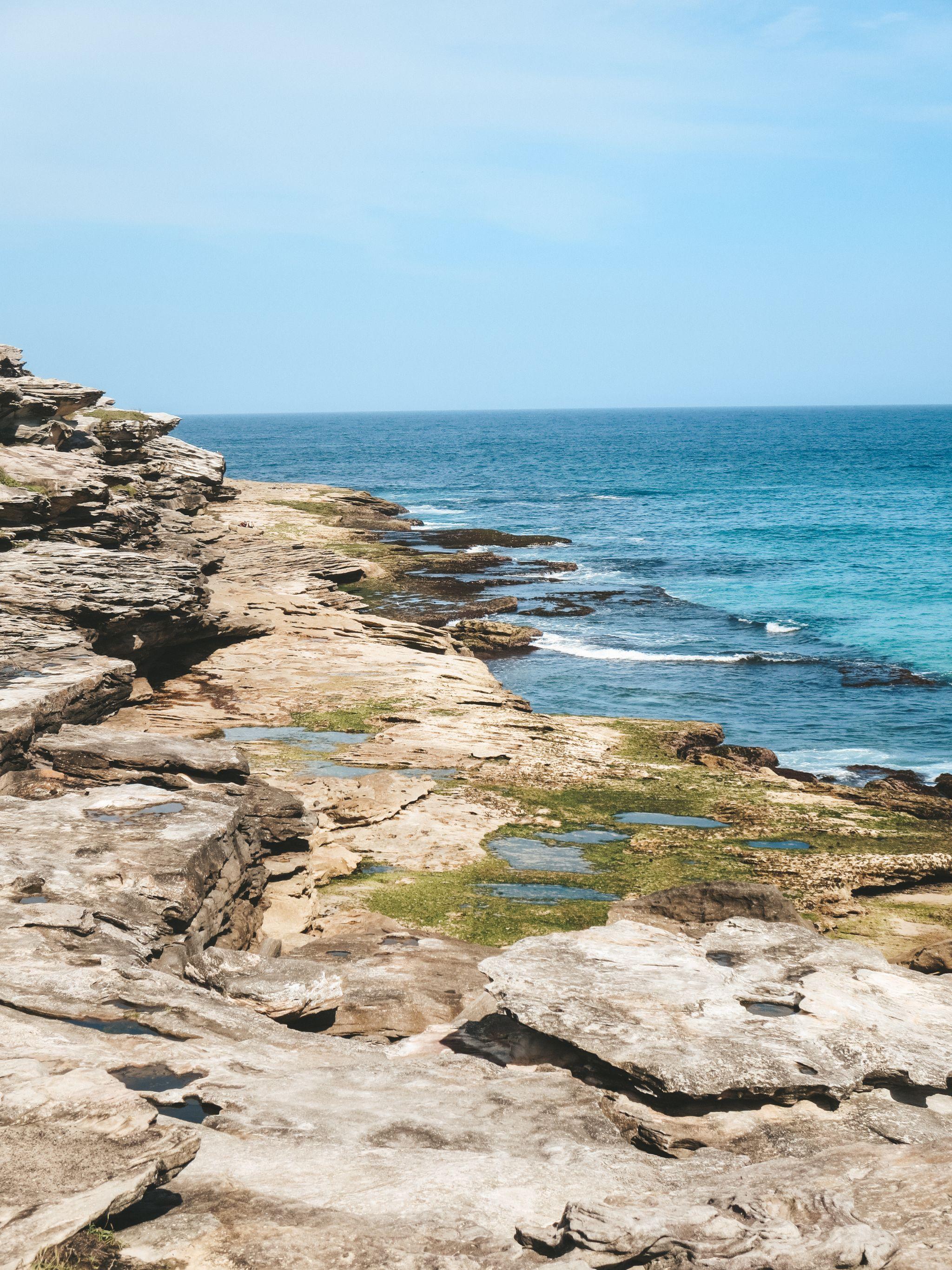jana meerman bondi beach sydney australia (26)