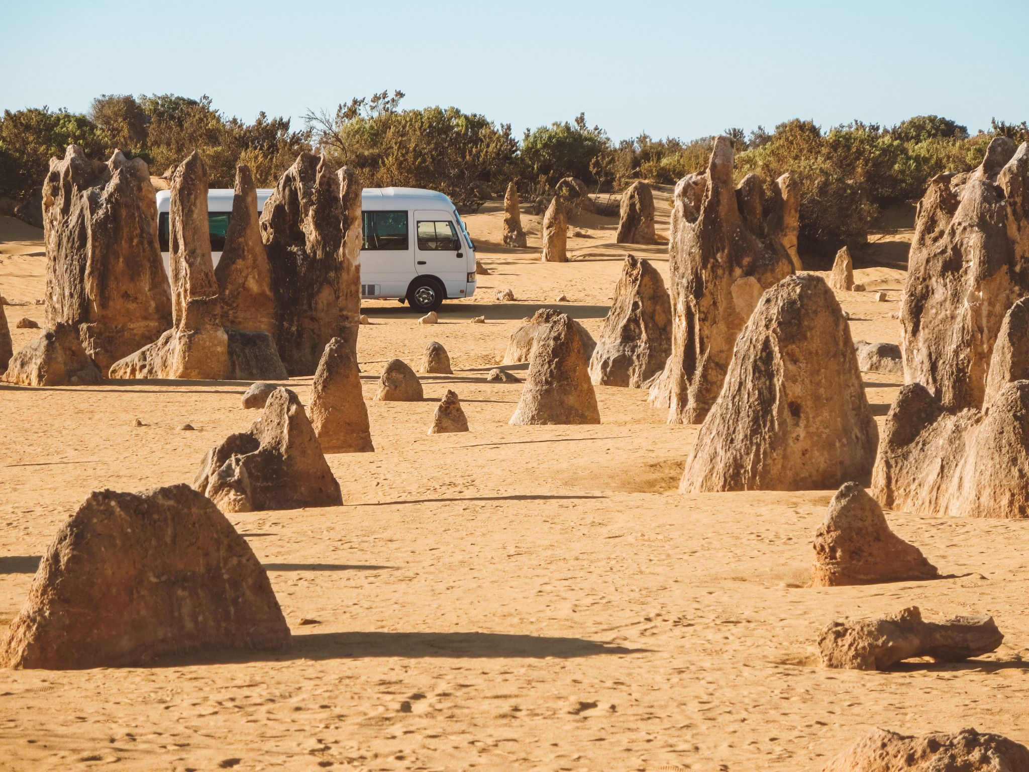 jana meerman pinnacles nambung national park (3)