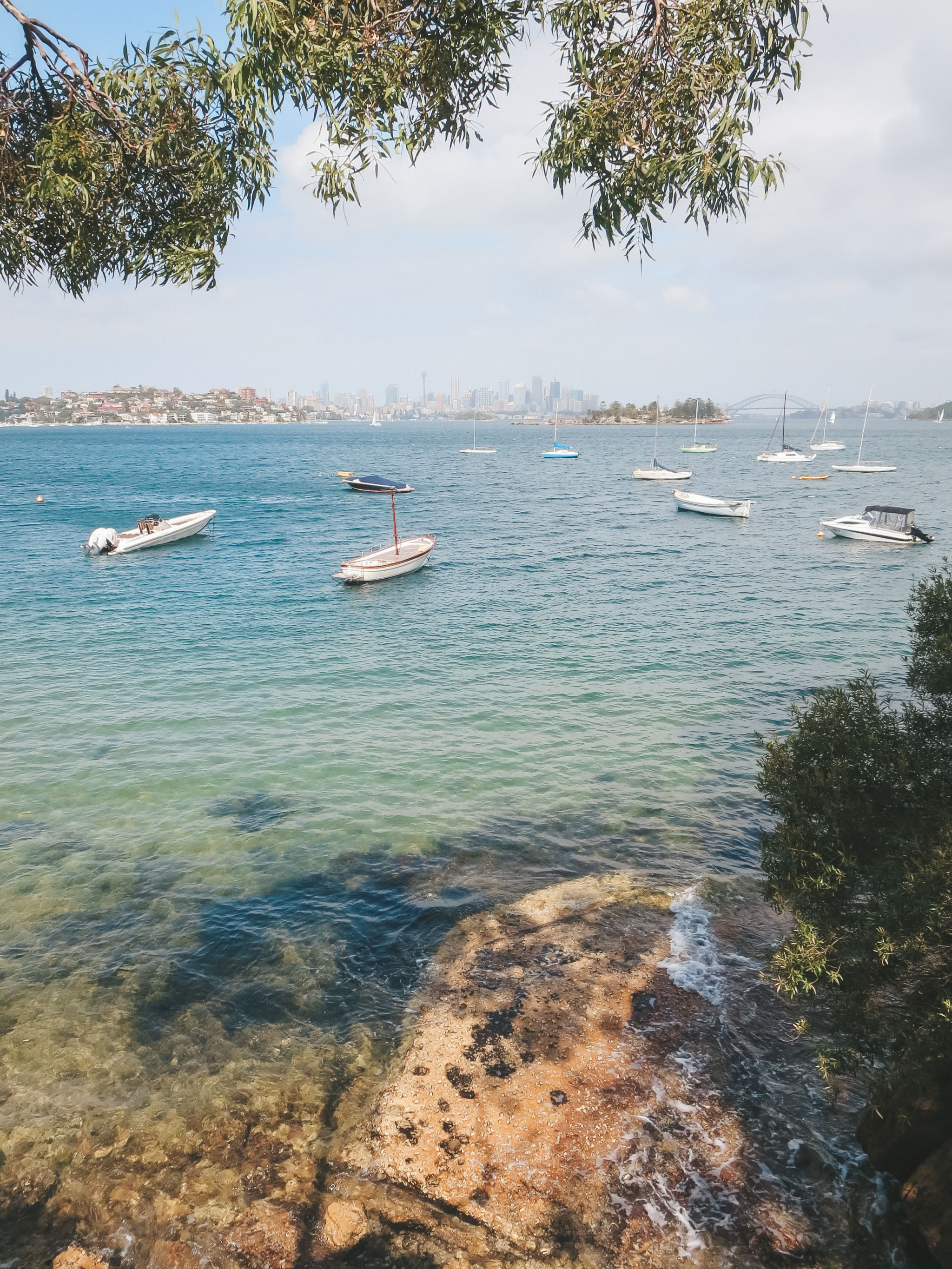 jana meerman rose bay watsons bay sydney (1)