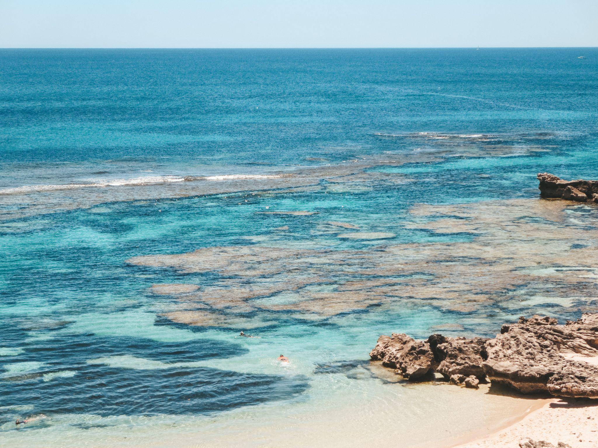 jana meerman rottnest island perth (2)