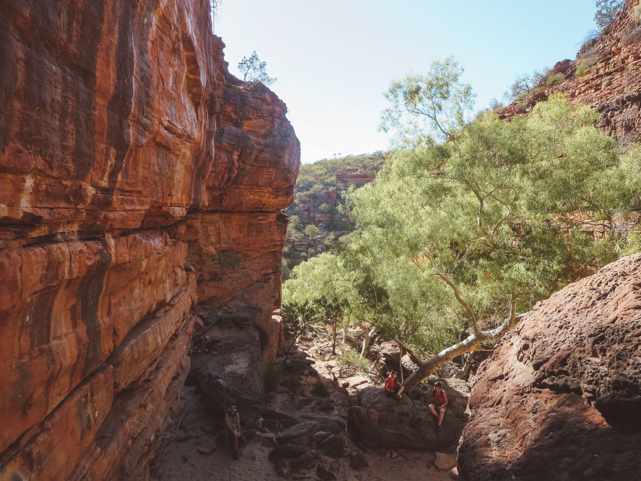 jana meerman kalbarri national park australia (6)