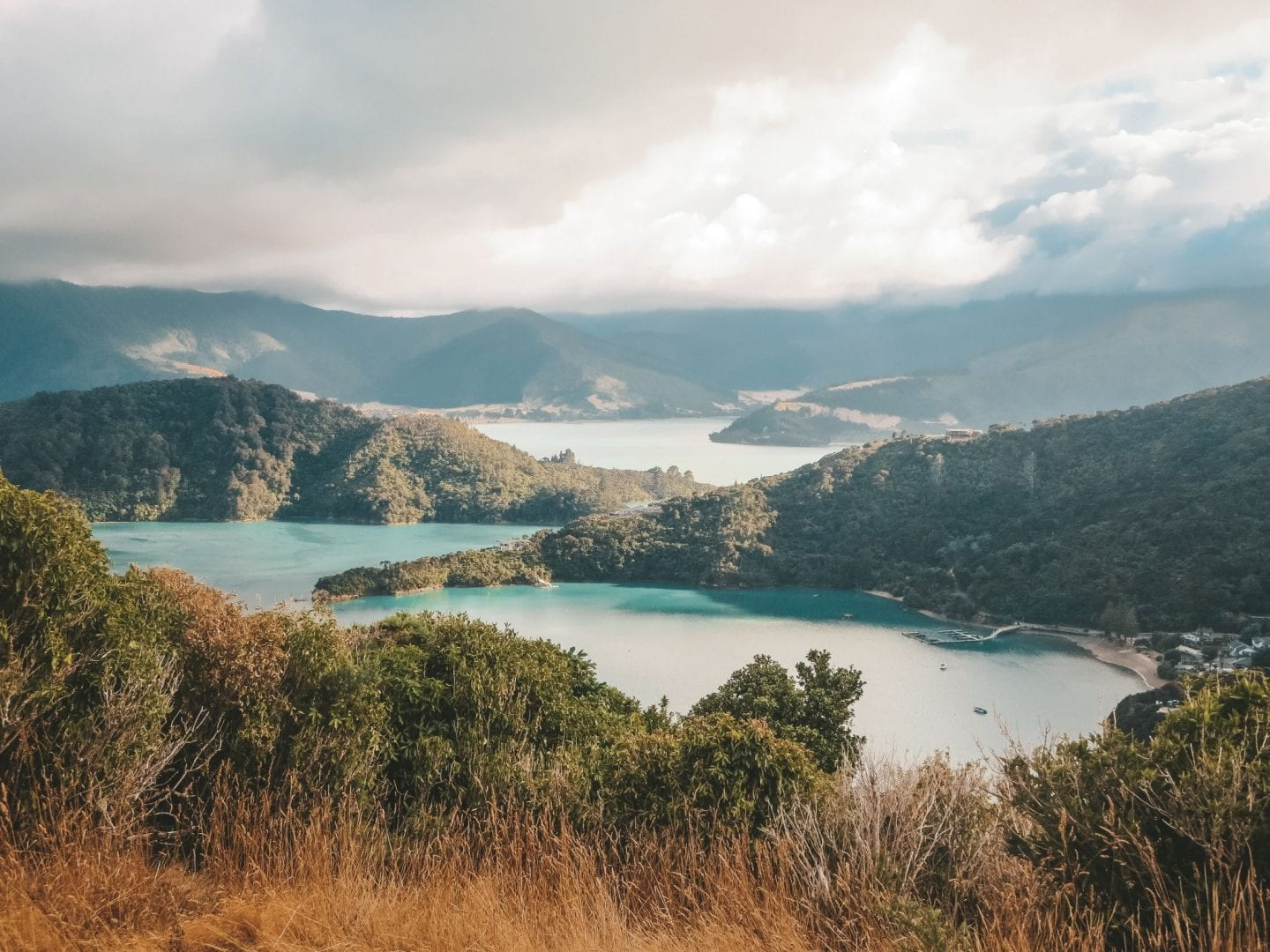 Queen Charlotte Track Hike