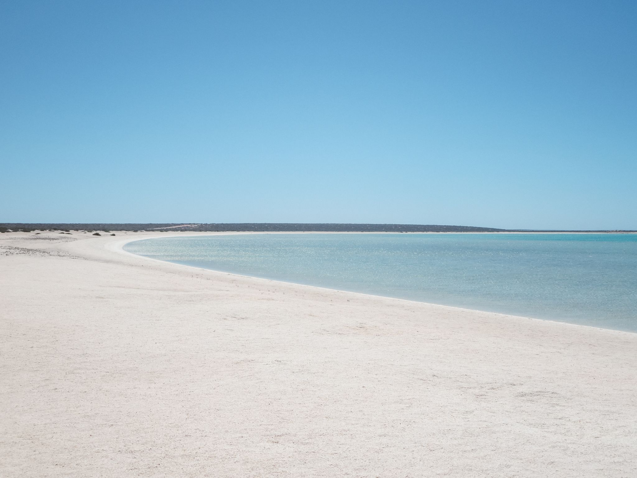 jana meerman shell beach shark bay australia (1)