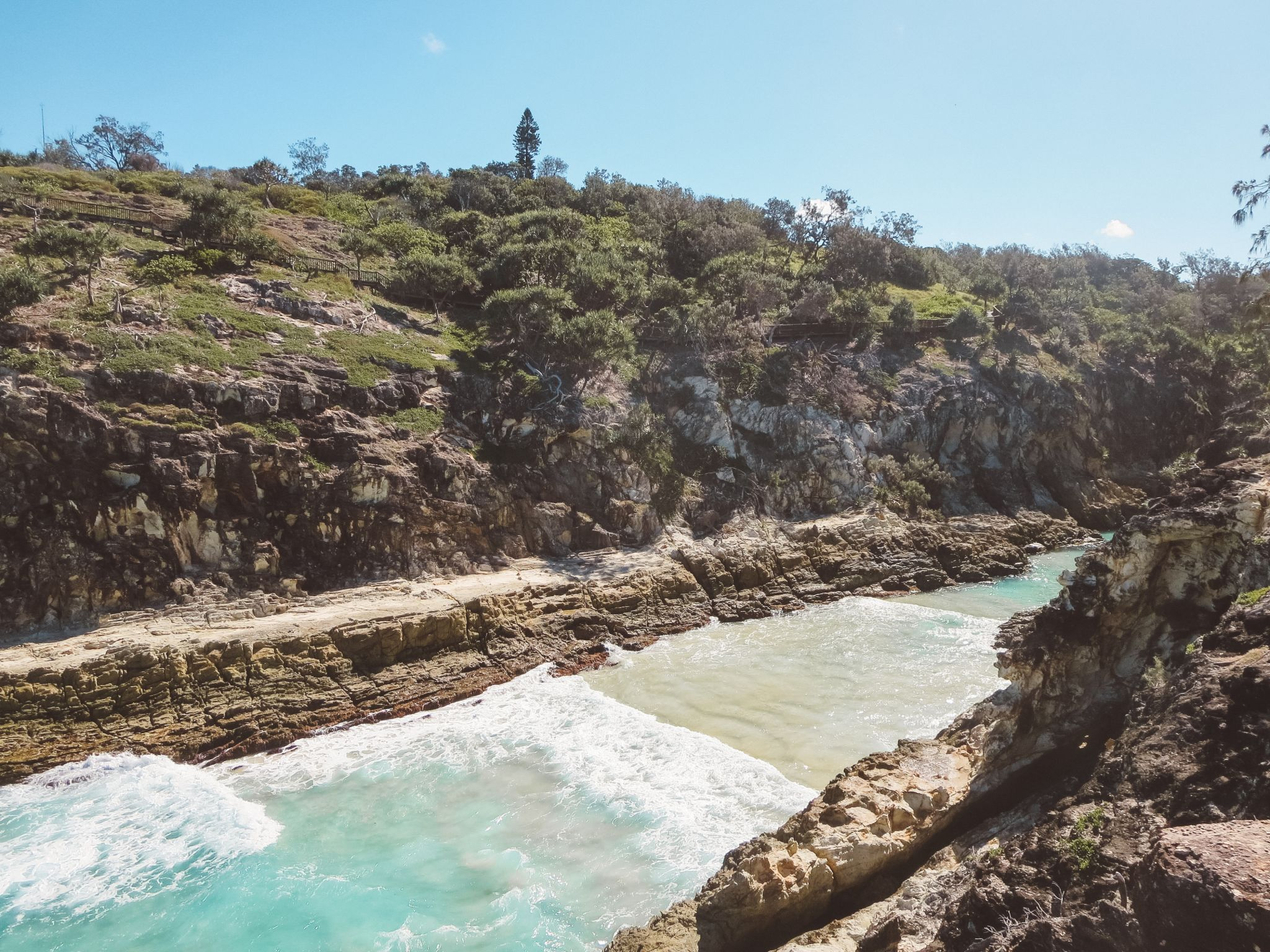 jana meerman stradbroke island brisbane (5)
