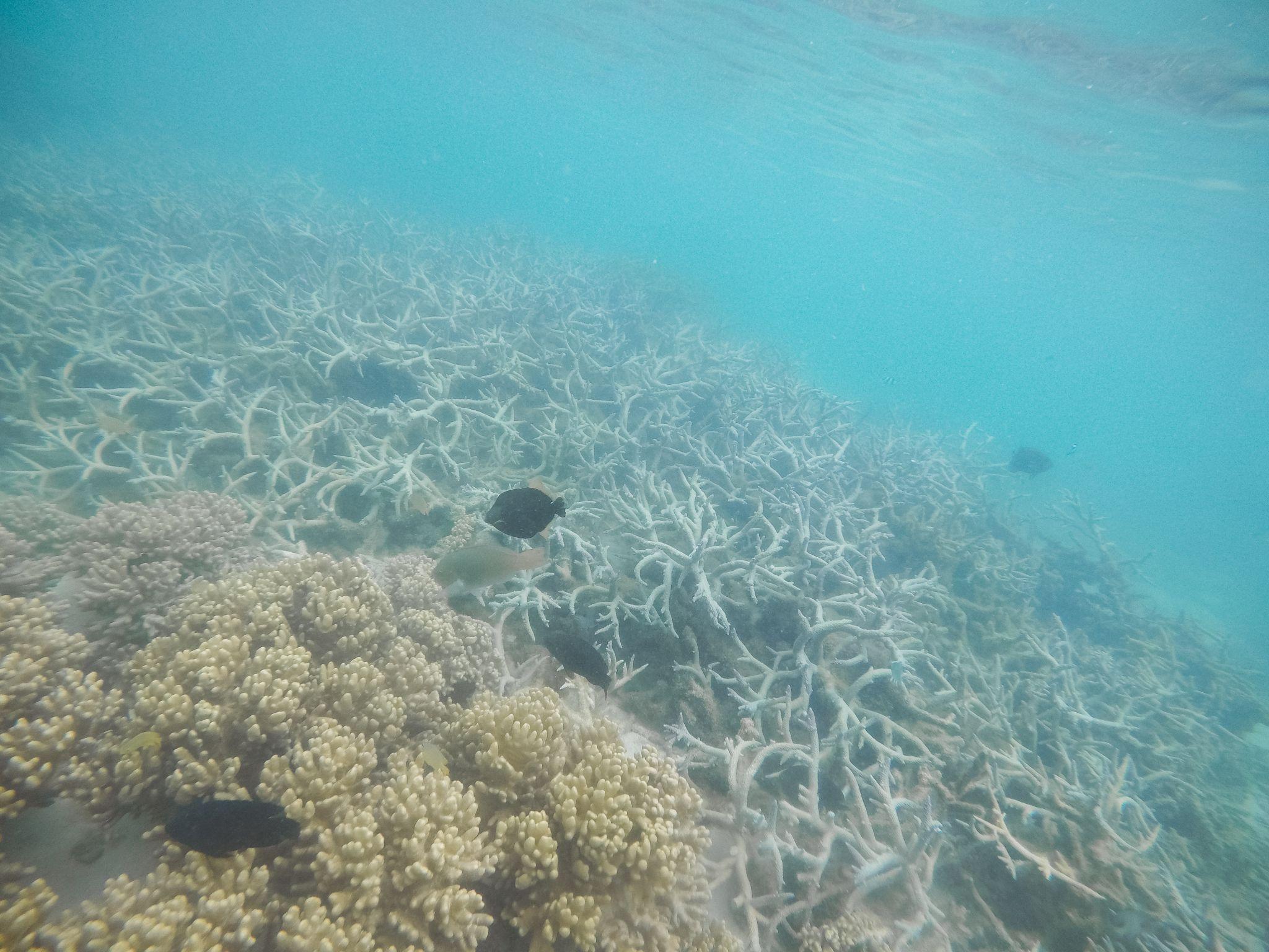 jana meerman turquoise bay (2)
