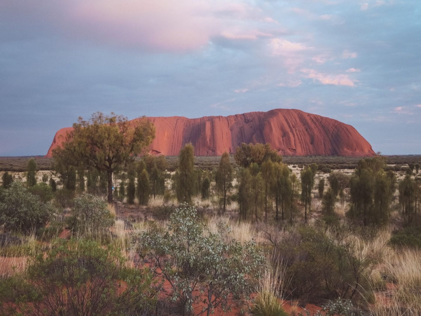 5 Things To Do in Uluru