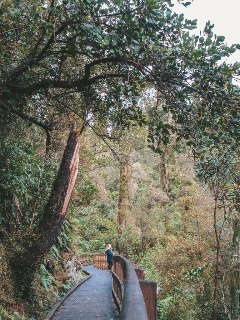 jana meerman hokitika gorge 6