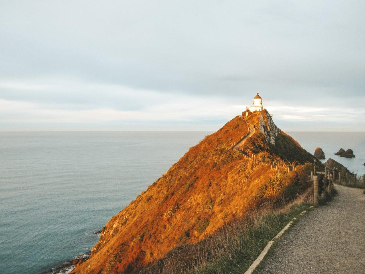 jana meerman nugget point new zealand 2