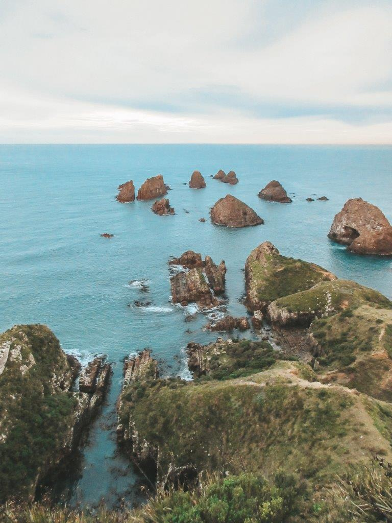 jana meerman nugget point new zealand 3