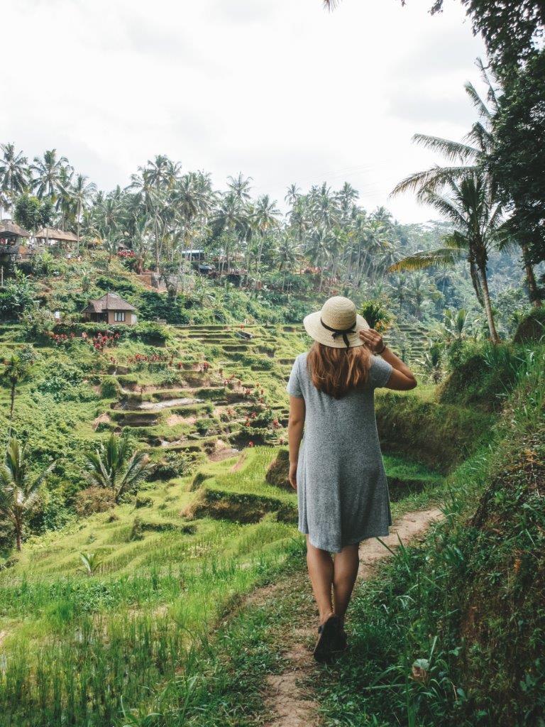 jana meerman tegallalang rice terraces bali 6