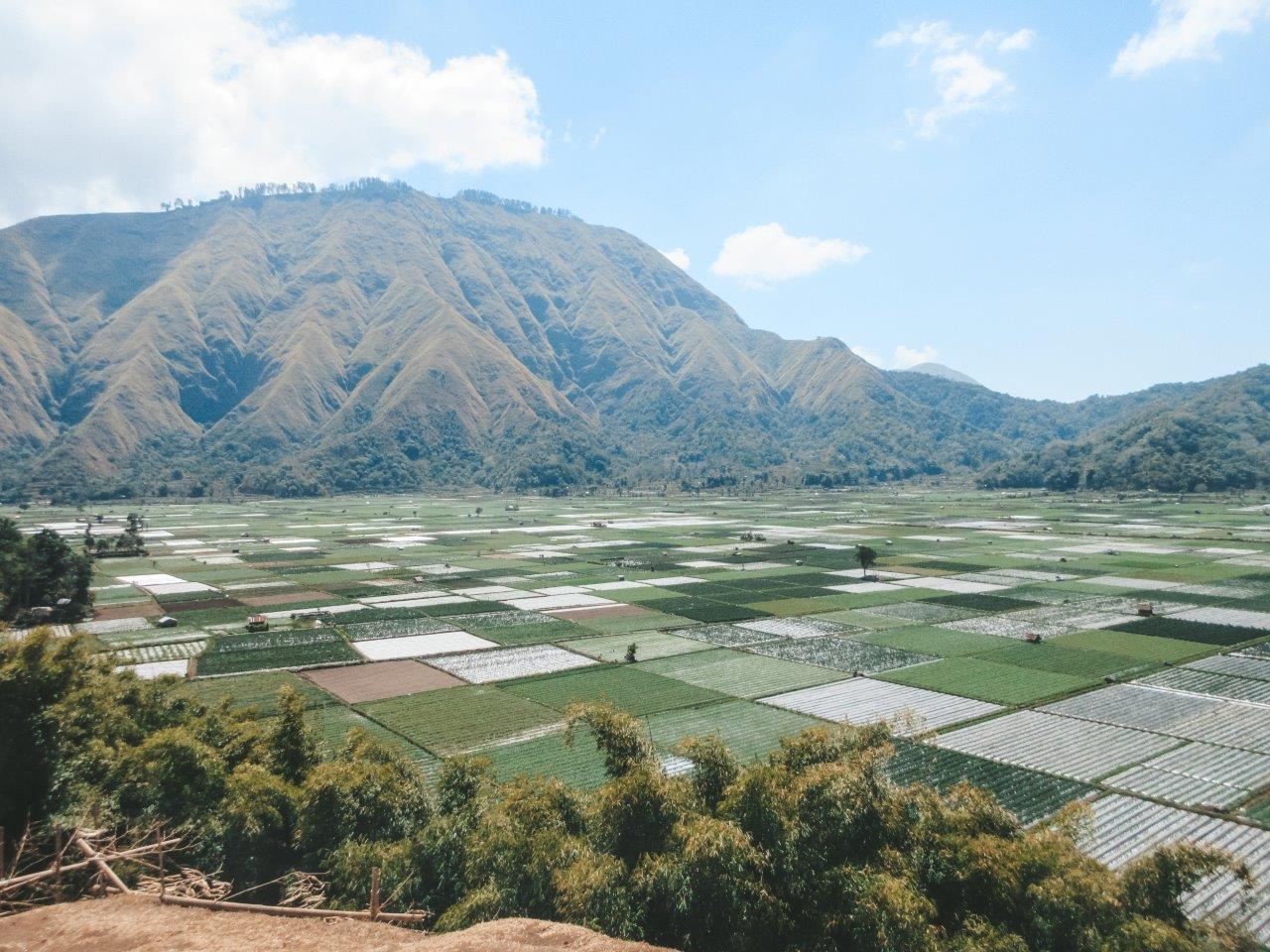 jana meerman bukit selong sembulan indonesia 3