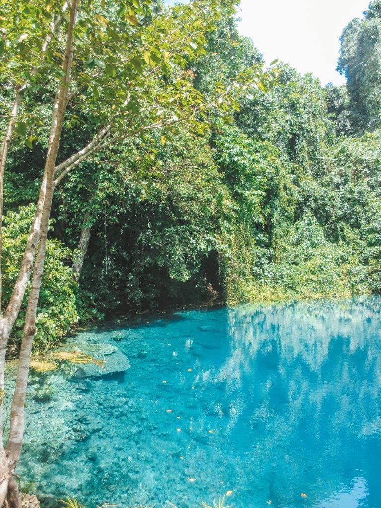 jana meerman matevulu blue hole espiritu santo vanuatu (1)