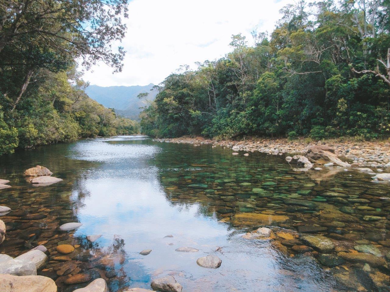 jana meerman parc provincial de la riviere bleue new caledonia (16)