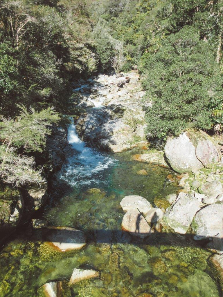 jana meerman wainui falls abel tasman national park new zealand (1)