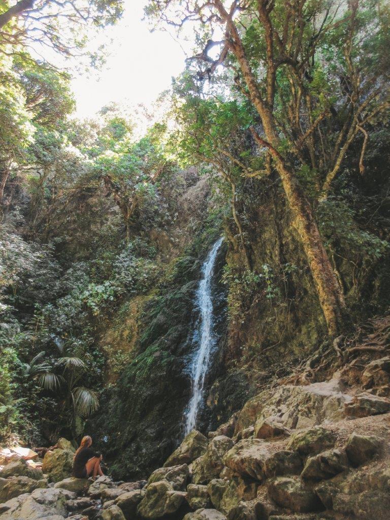 jana meerman percy scenic reserve (2)