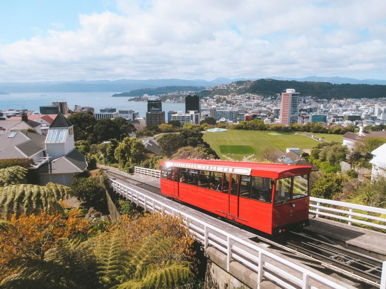 jana meerman wellington cable car (2)