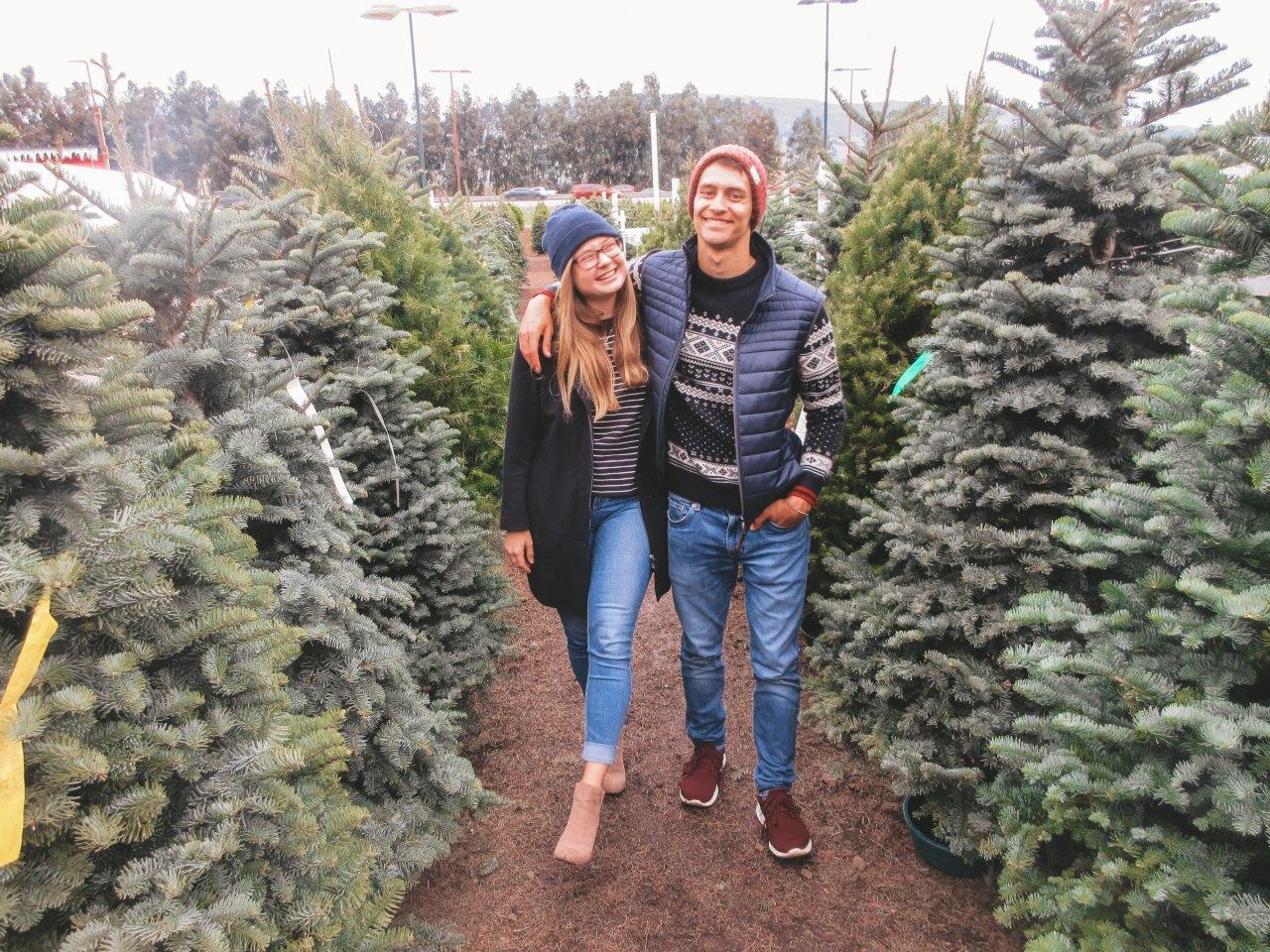 jana meerman christmas tree