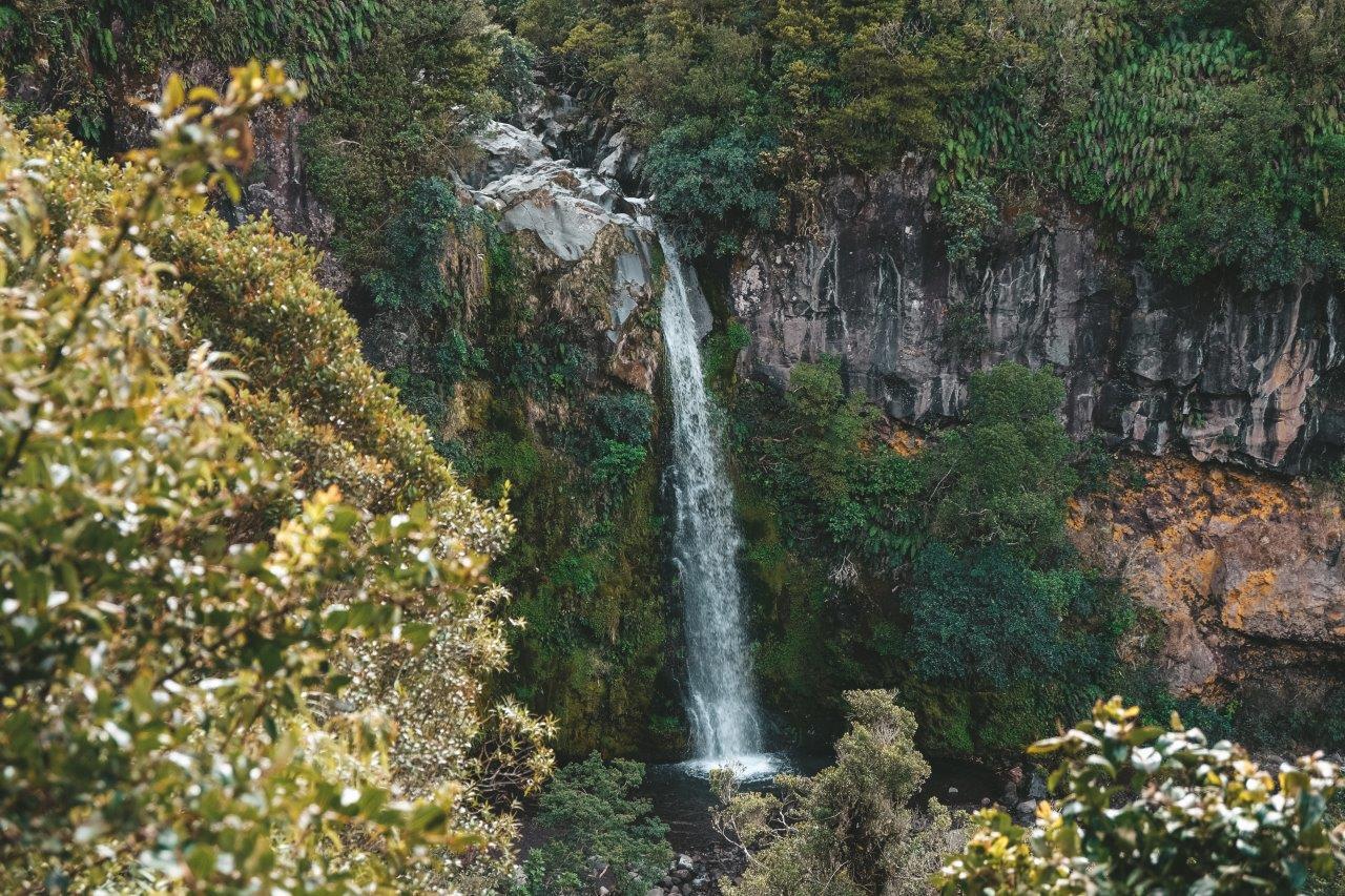 jana meerman dawson falls (1)