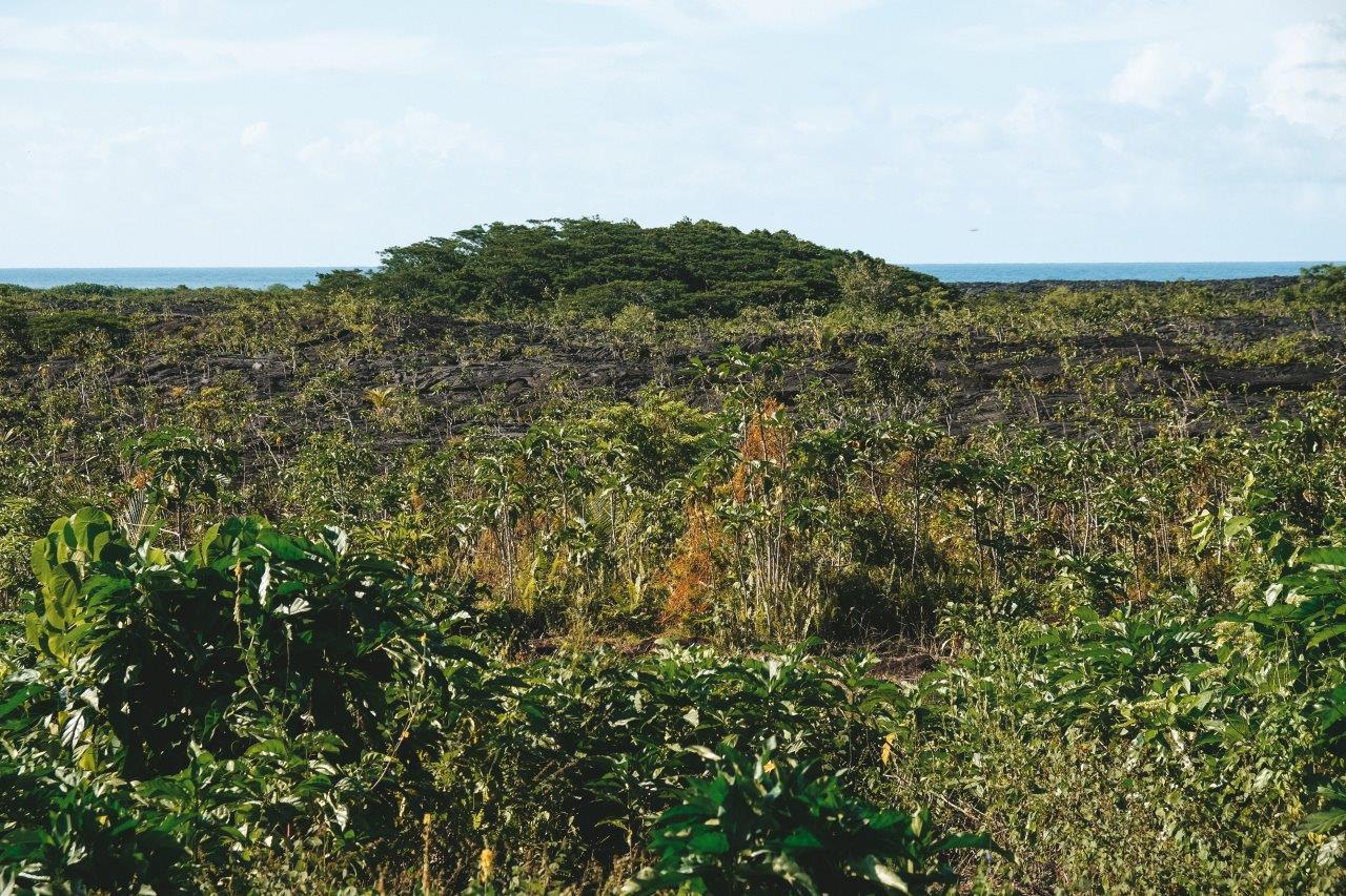 jana meerman lava fields savaii samoa