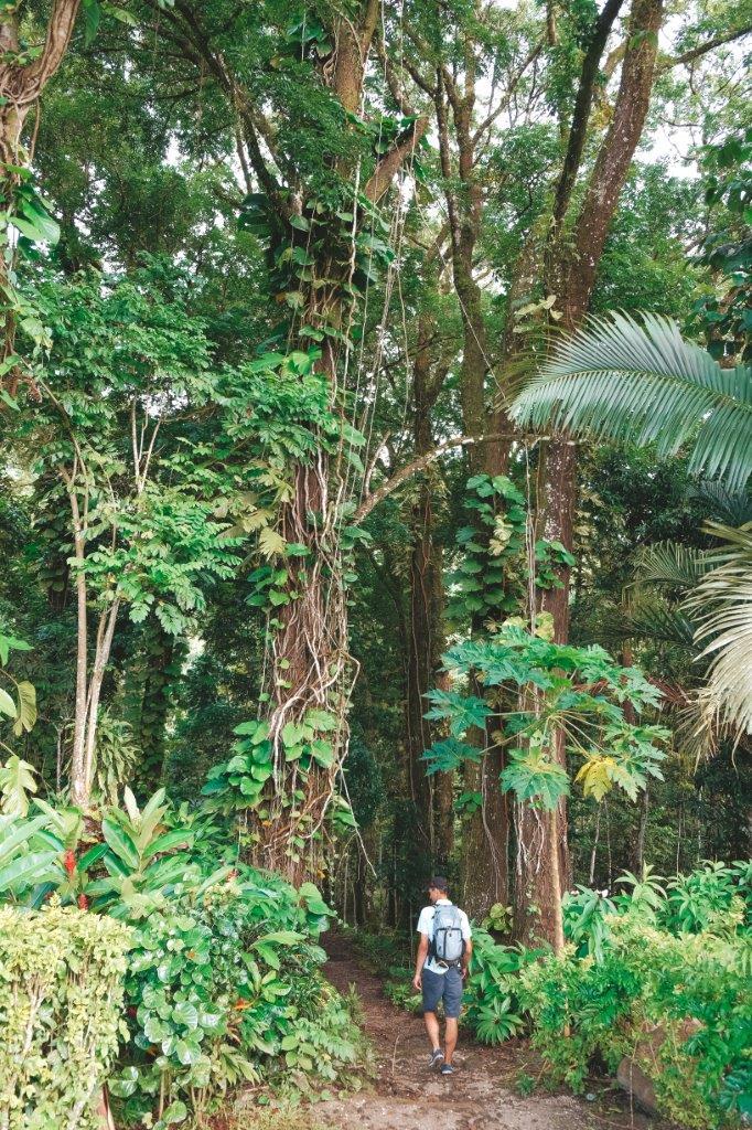 jana meerman robert louis stevenson tomb samoa (1)