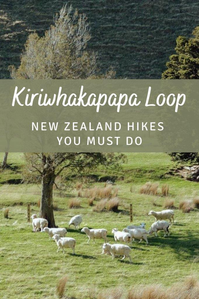 Pinterest - Kiriwhakapapa Loop 2