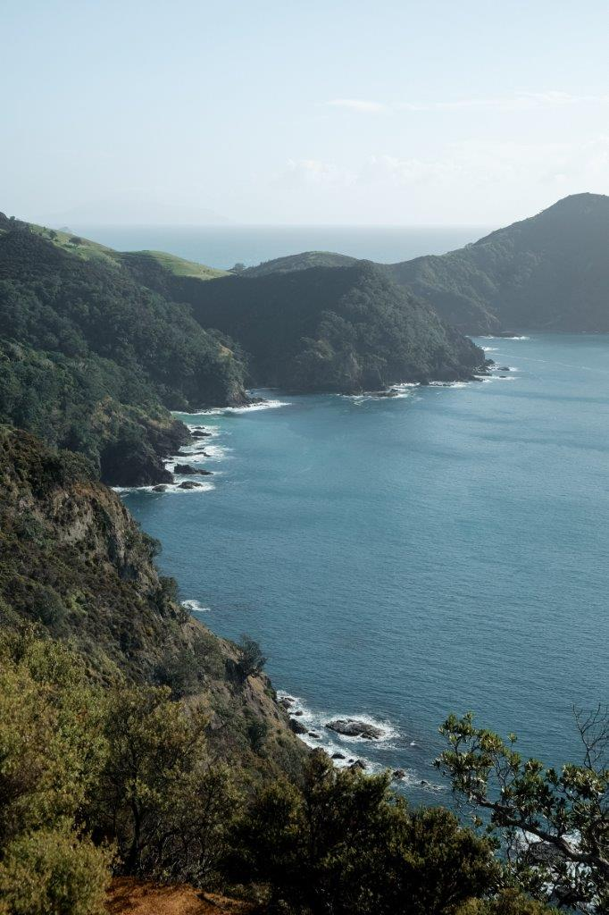 jana meerman coromandel coastal walkway (1)