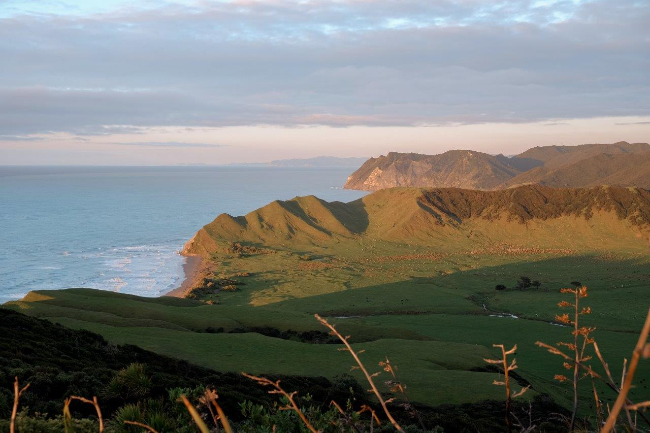 jana meerman first sunrise east cape (5)
