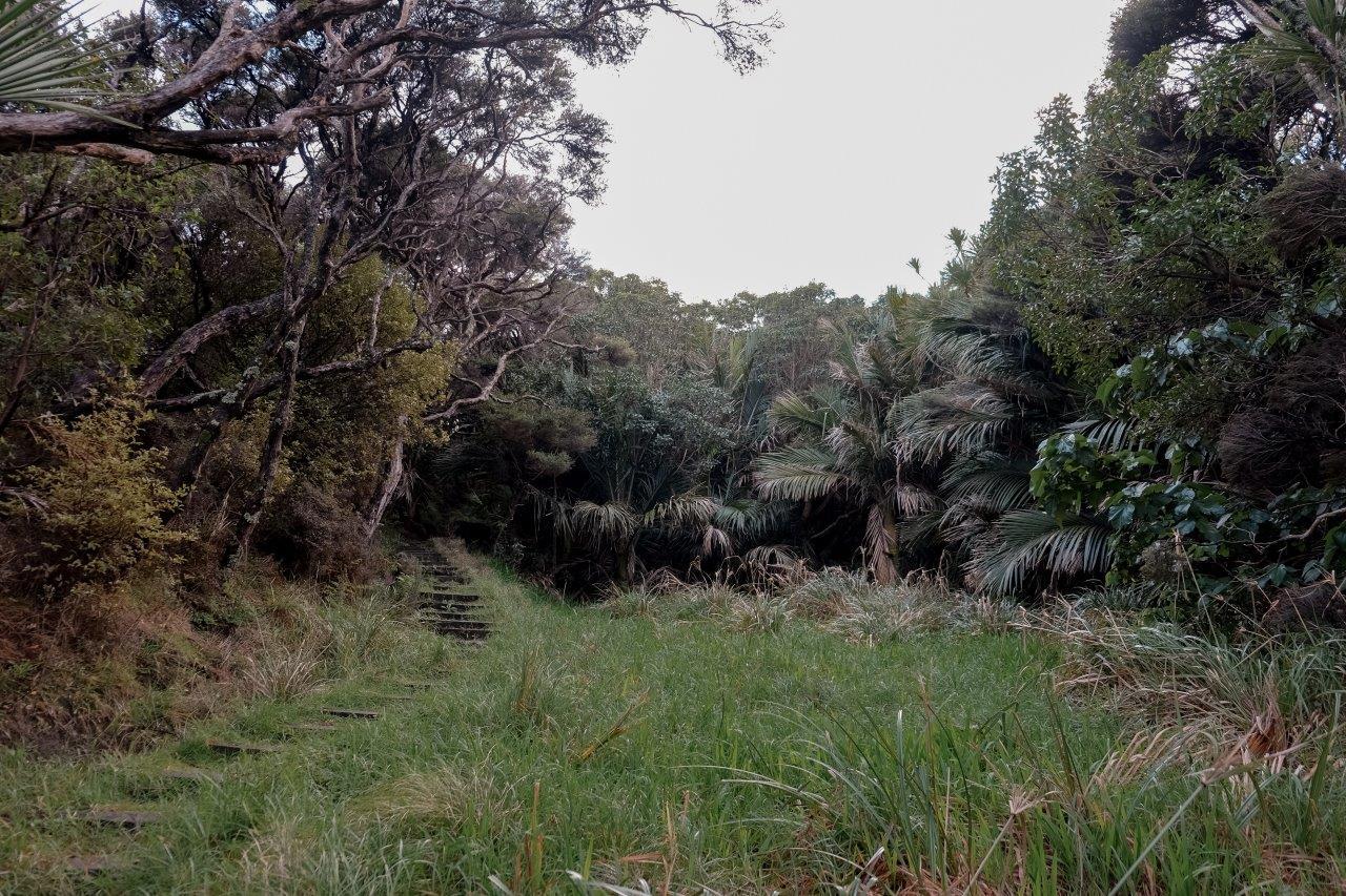 jana meerman first sunrise east cape (1)