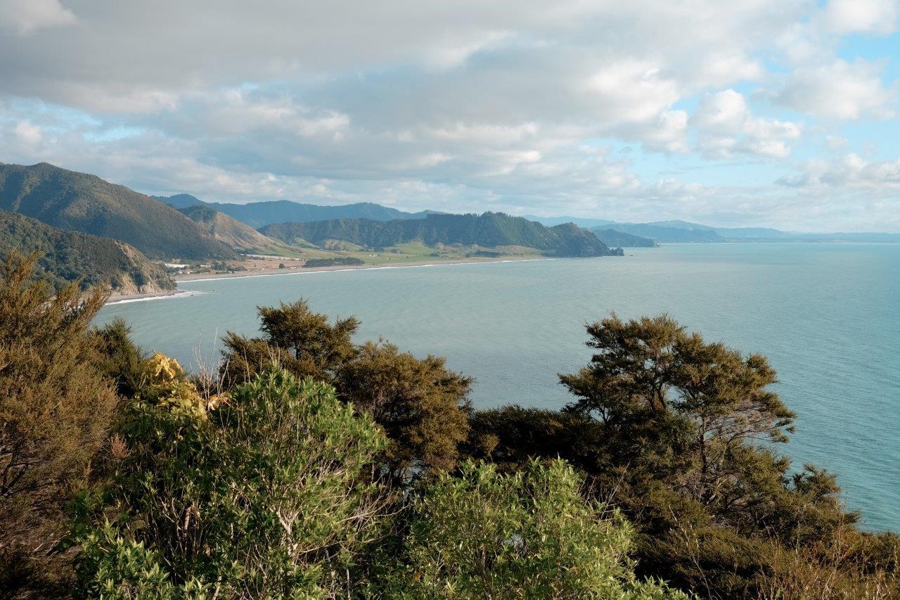 jana meerman gisborne peninsula opotiki (1)