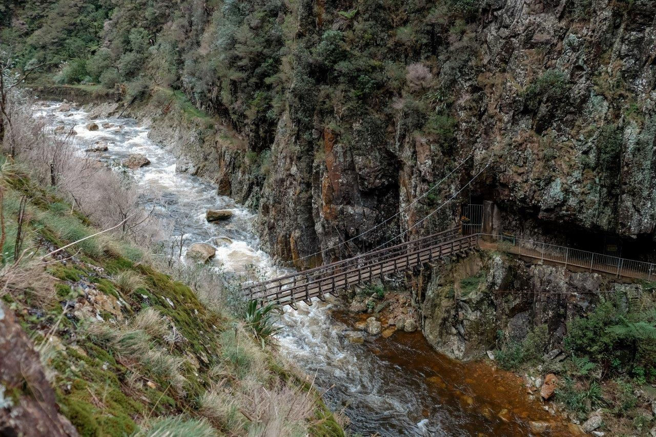 jana meerman karangahake gorge (2)