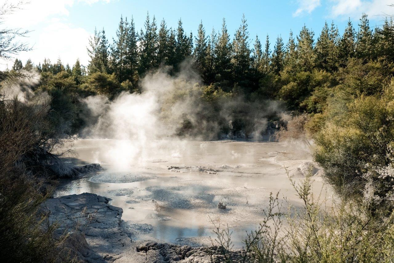 jana meerman mud pool rotorua