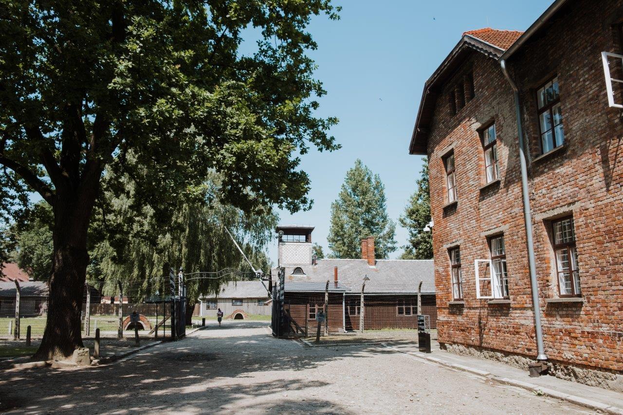 jana meerman auschwitz birkenau poland (2)