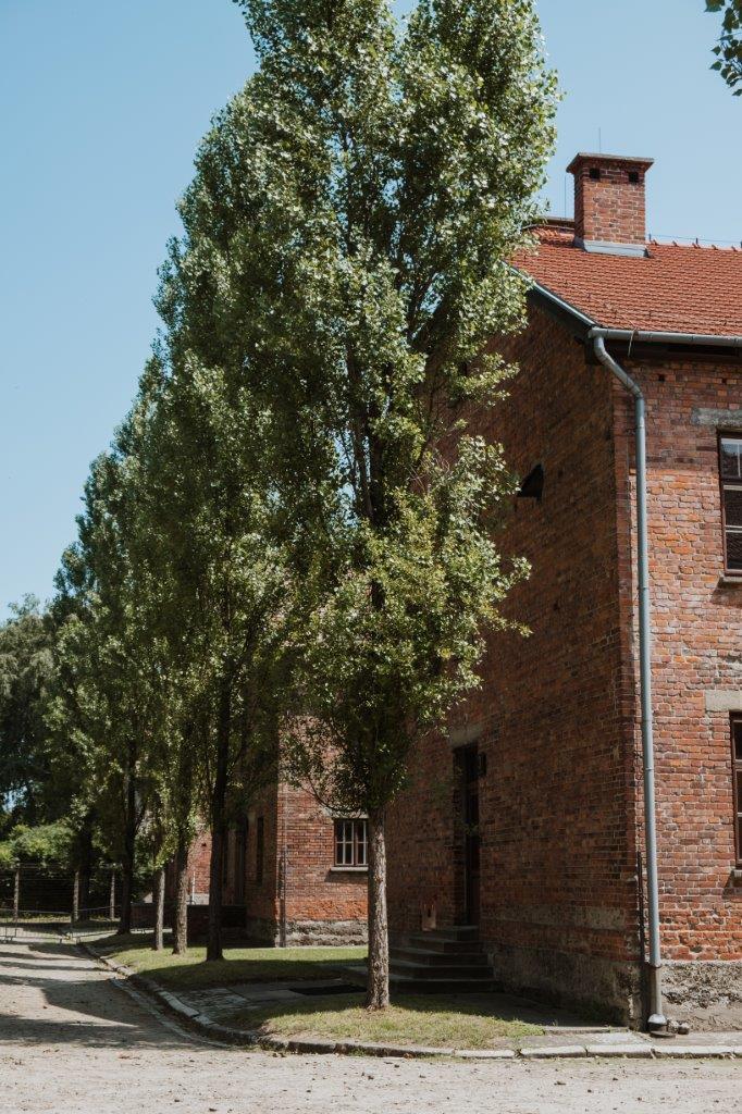 jana meerman auschwitz birkenau poland (8)